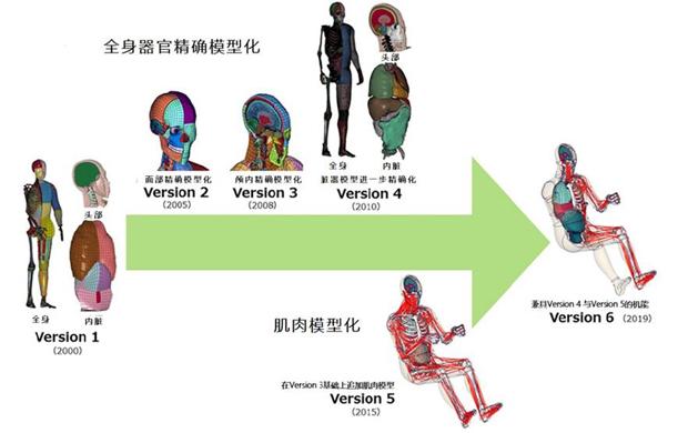 丰田改进虚拟人体模型THUMS