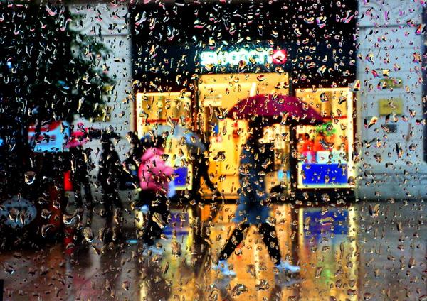 申城未来10天仍将阴雨
