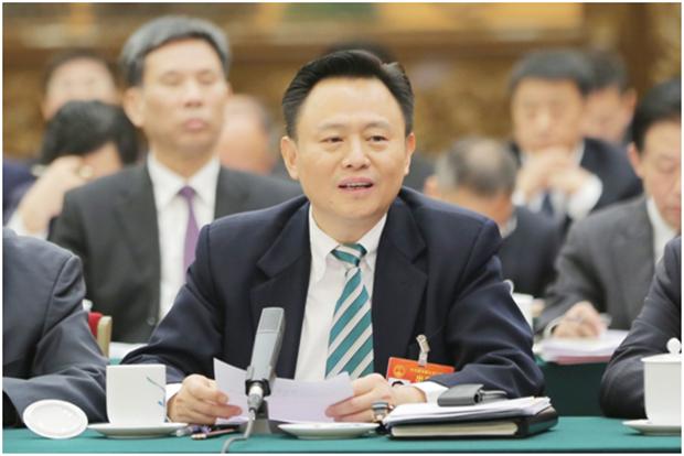 徐留平:抓住新能源汽车发展机遇 实现自主品牌跨越式发展
