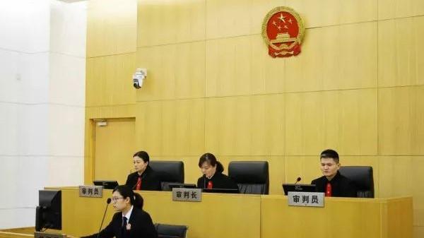 """""""罗子君""""这场官司输还是赢?马伊琍肖像权纠纷上诉案在沪宣判"""
