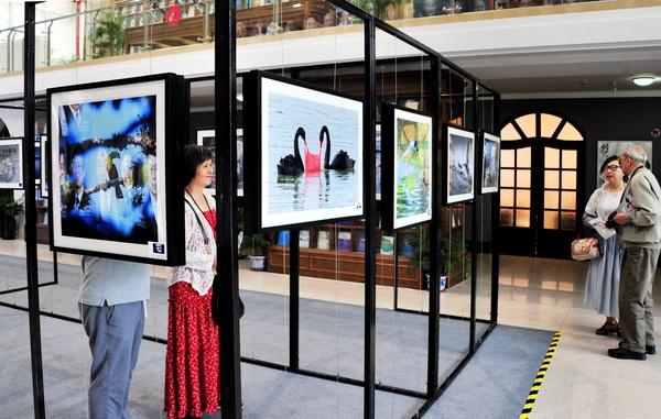 记录世界 感知生态 用镜头定格人与环境的影像