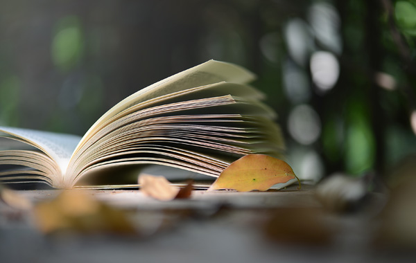 晨读| 做一个时间的富翁