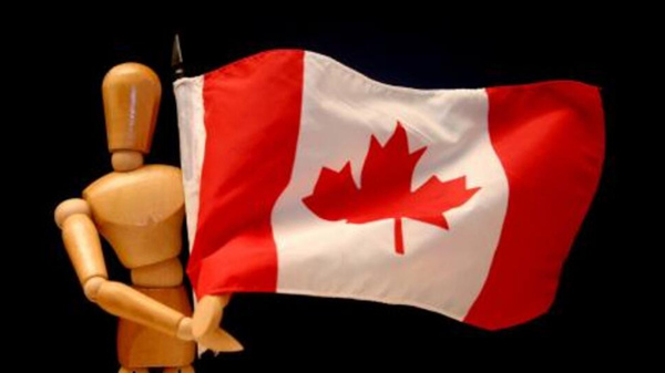 """一个大大的""""惨""""字送给加拿大!"""
