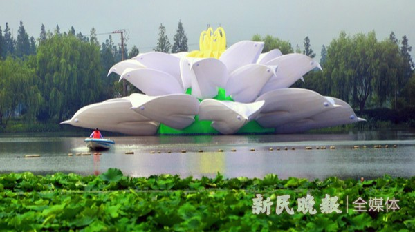 """""""梦之莲""""精彩亮相大莲湖"""