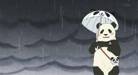 梅雨不走,台风要来!上海明起4天雨雨雨雨