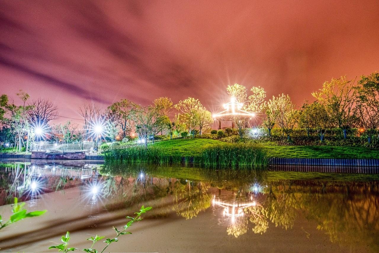 超70000㎡!上海这座公园宛若仙境,华丽变身!快去打卡!