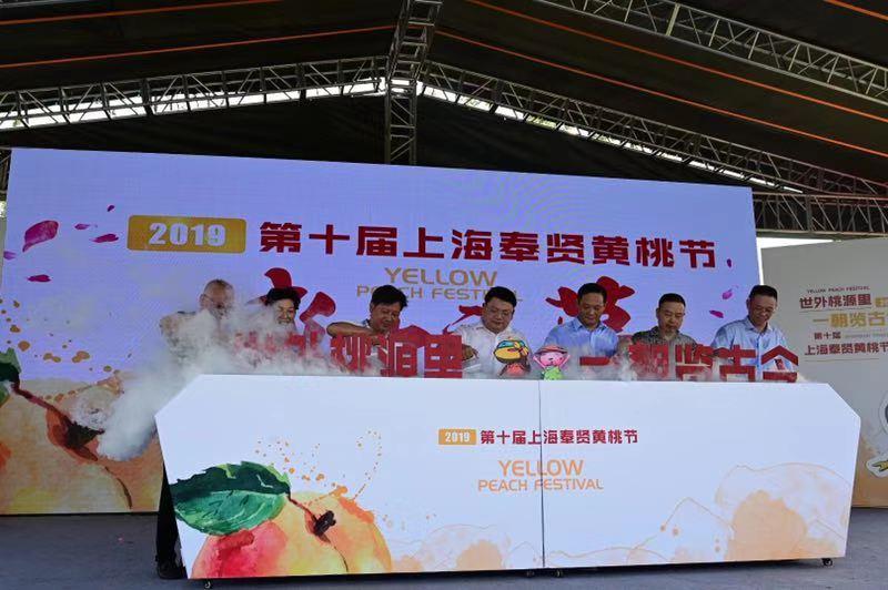 世外桃源里  一朝览古今 2019上海奉贤黄桃节