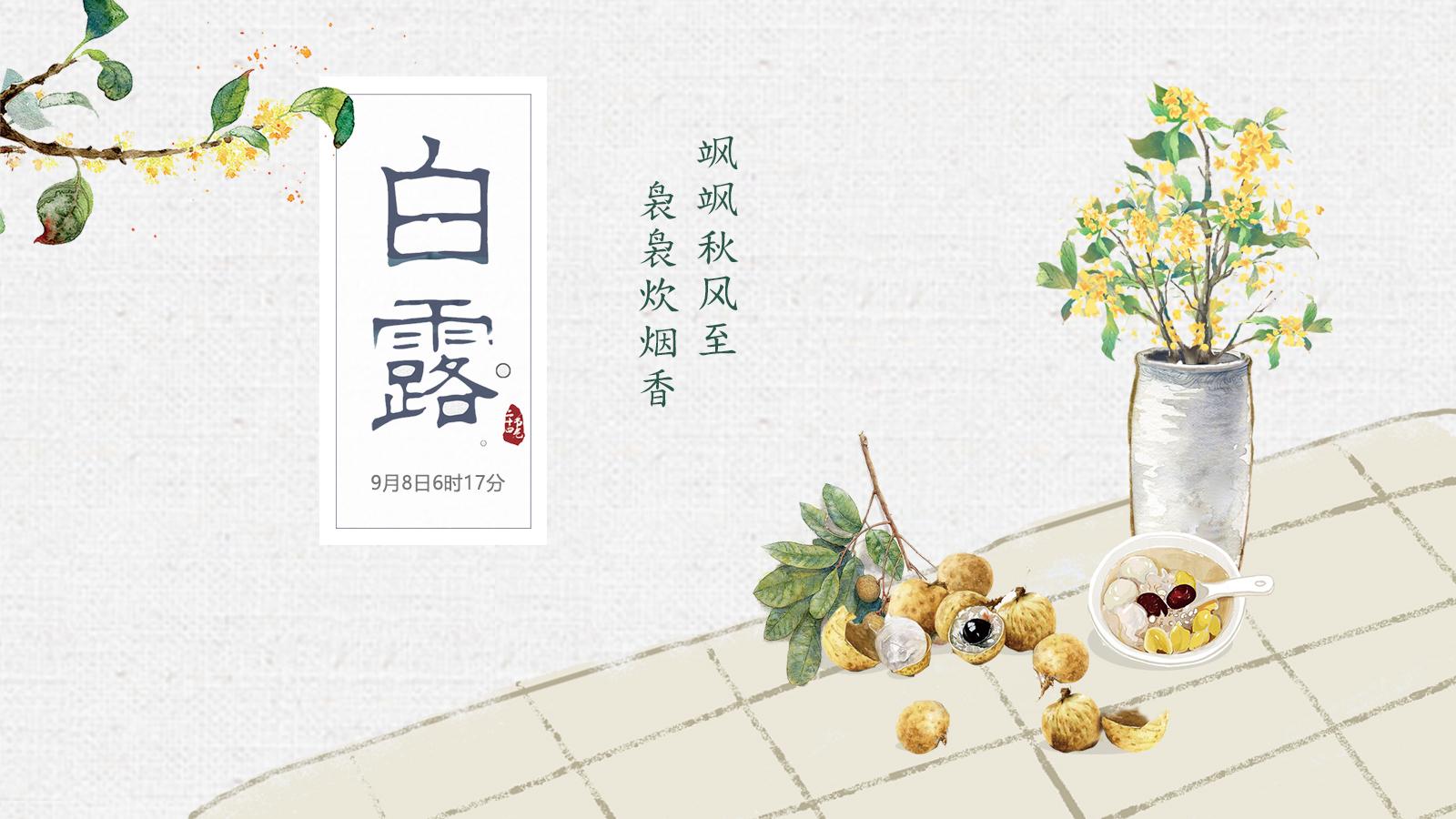 短视频海报|白露