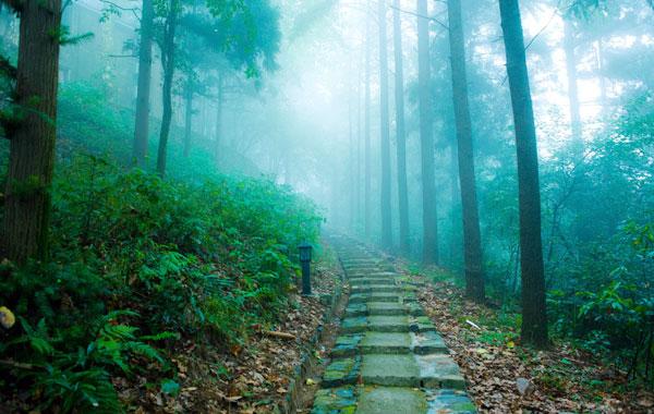 晨读|独旅,也是一种人生体验