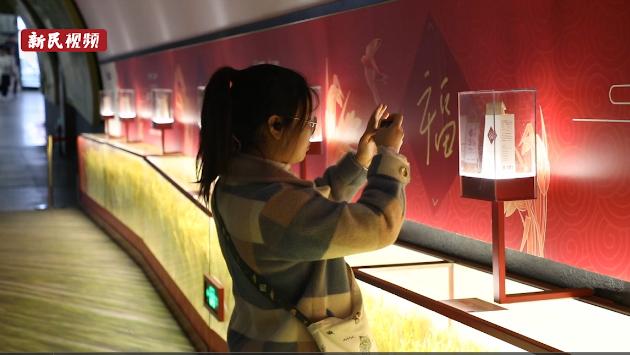 视频 | 地铁站内惊现金色稻田? 记者街访市民:吃过没见过