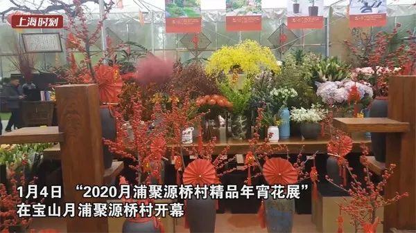 这座少年宫今年60岁!这里有你的记忆吗?全国仅上海有的这项考试