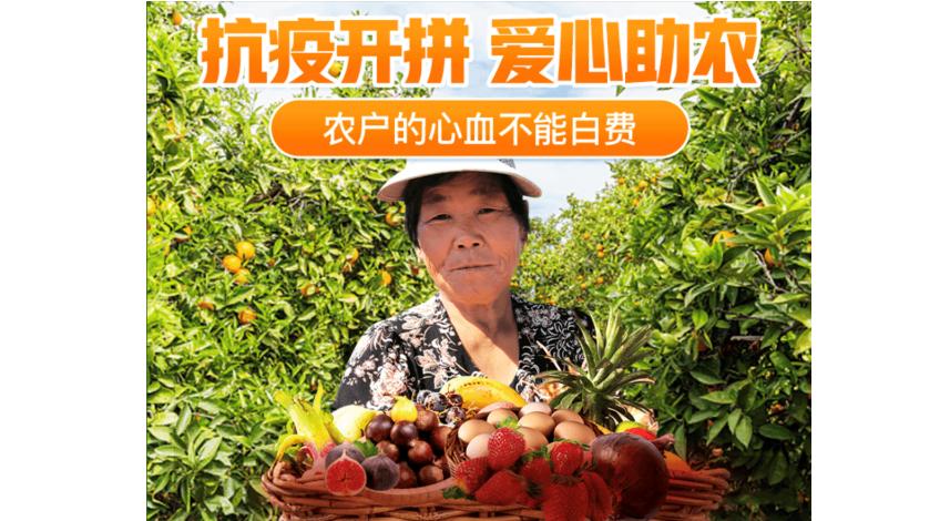"""拼多多与优农协会、中化发起""""农产品公益联盟"""" 助力春耕稳产保供"""