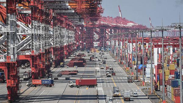 视频 | 洋山港复工复产加快 船舶流量已达去年同期90%