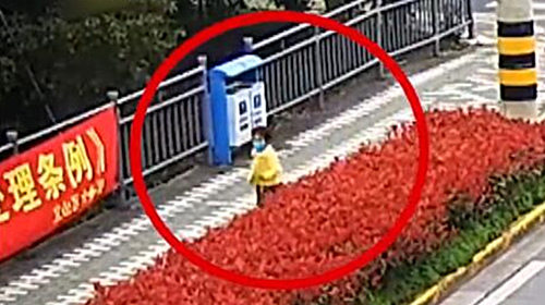 视频 | 3岁萌娃找妈妈迷路了 看见警察叔叔就飞奔过去