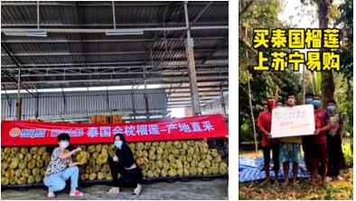 泰国农业领事直播带货:买泰国榴莲来苏宁超市、家乐福