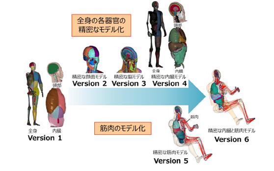 """丰田将无偿公开虚拟人体模型""""THUMS"""""""
