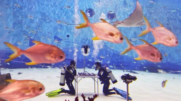 视频|在水下下象棋是什么体验?看这场棋赛就明白了