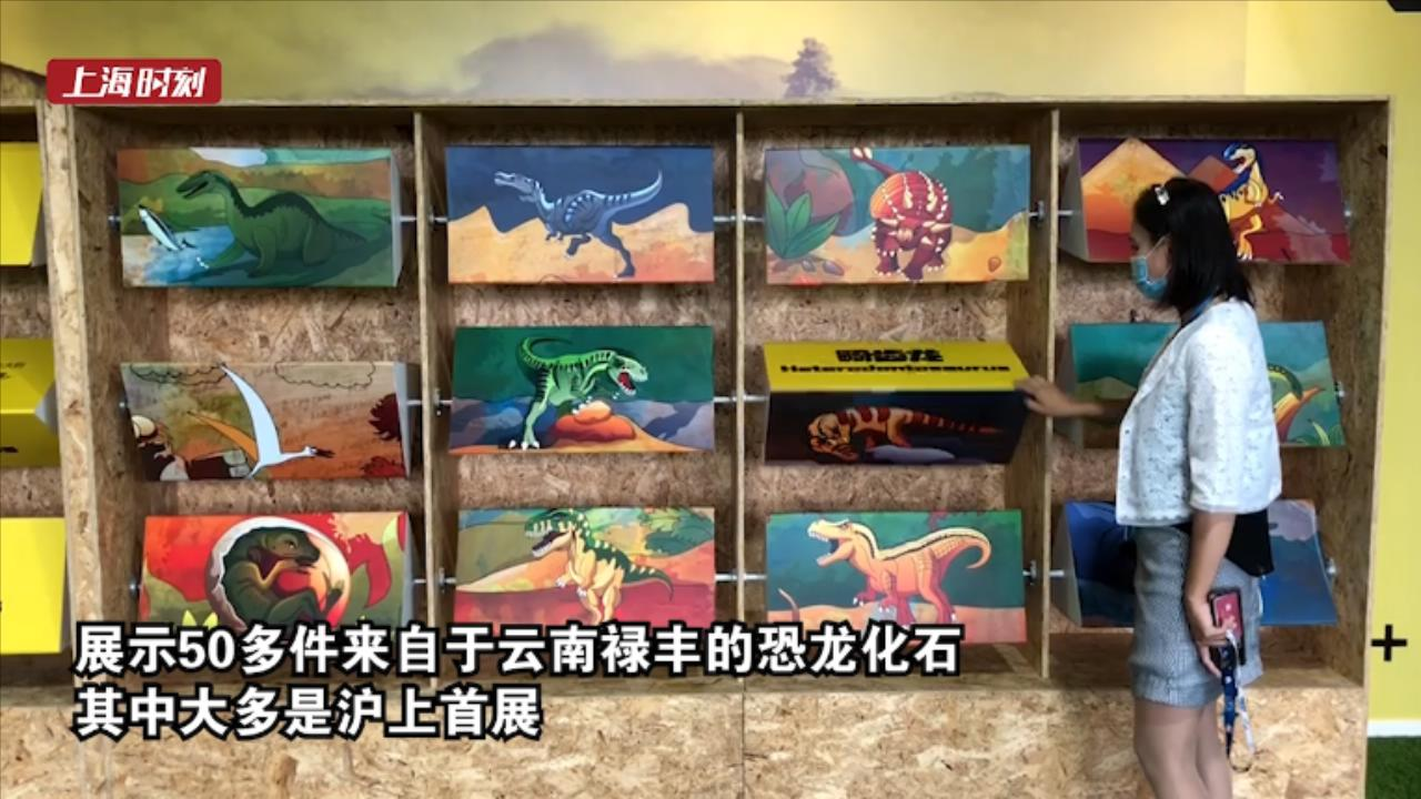 视频 你见过1.9亿年前的恐龙胚胎化石吗?在上海这里能看到!