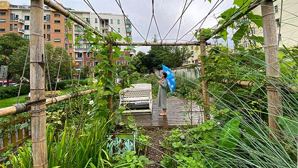 视频 | 在城市里插秧观鸟?上海这些社区做到了
