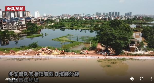 视频 | 直击鄱阳县:大堤之外,江水几乎和前一天刚加高的圩堤持平
