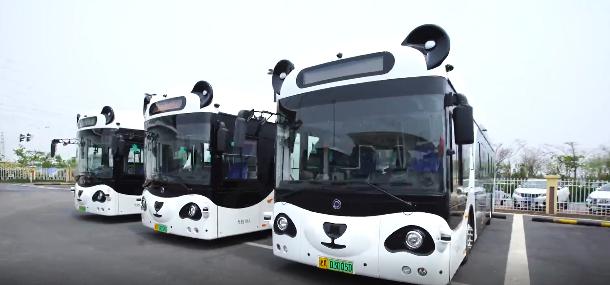 太萌啦!上海街头现熊猫公交车,自带各种高科技!你碰到过吗?