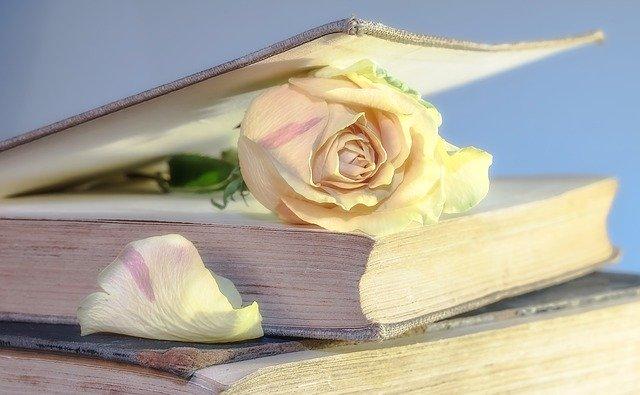 晨读   让余生精彩