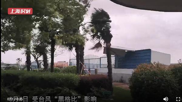 视频 金山海边风力强 安全巡查不放松