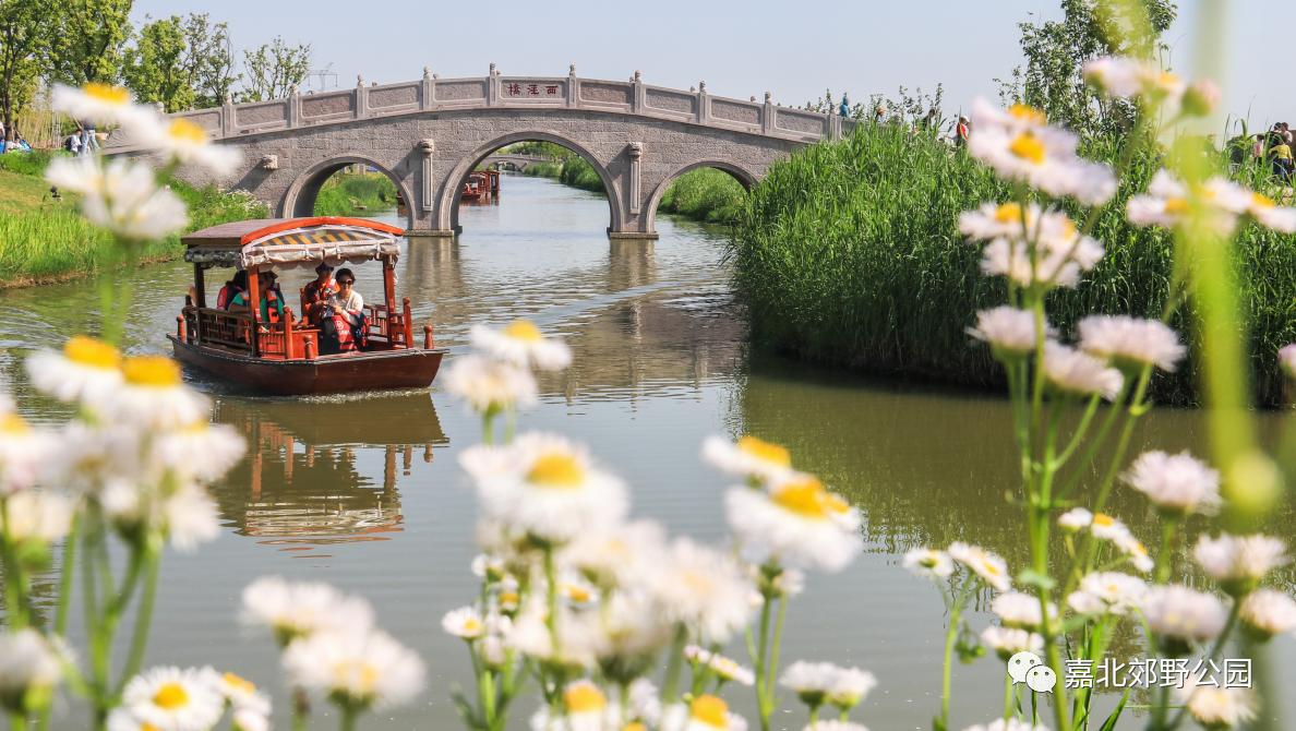 上海这5个超大郊野公园,十一假期又有新玩法!快来天然氧吧尽情呼吸吧!