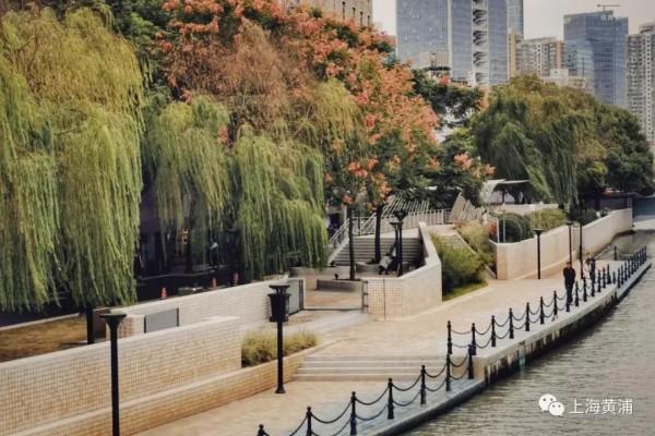 嗲!苏州河岸又添一处免费打卡步道!这里还藏着上海人的弄堂时光!