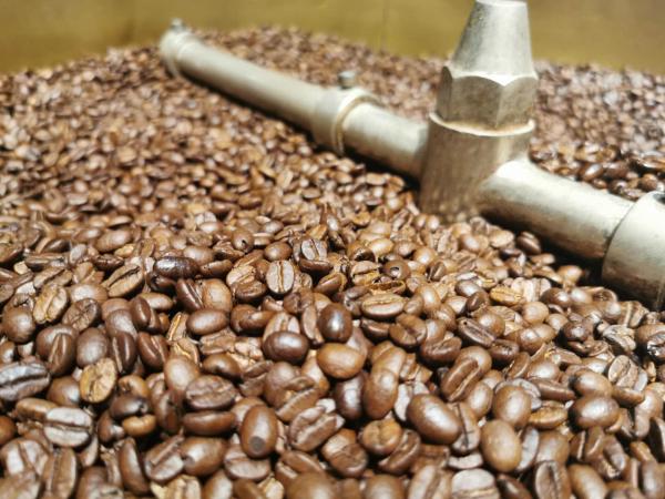 赴一场咖啡之约  东帝汶咖啡将亮相第三届进博会