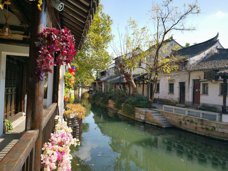 走遍中国(三十七): 黎里,梨花如雪开满黎川岸的千年古镇!