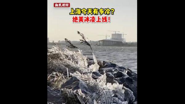 遭遇霸王级寒潮,上海今天有多冷?绝美冰凌上线!
