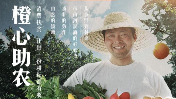 """滴滴启动""""橙心助农""""计划  助力乡村振兴农民增收"""