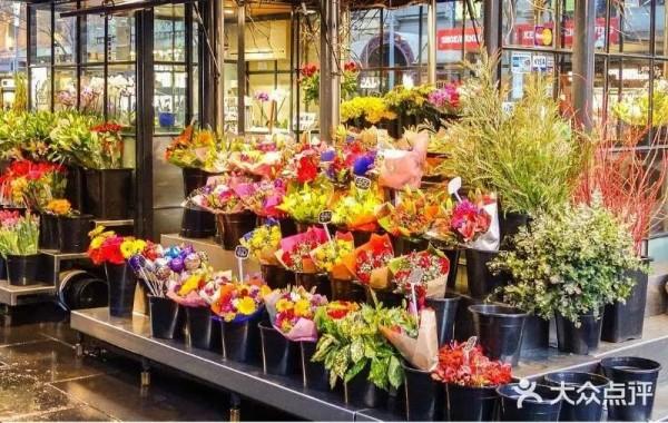 新年要烊头!上海人家摆上这些年宵花,让你又喜又旺!魔都购花攻略来了~