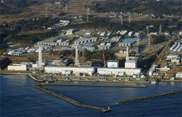 核废水入海有什么危害?排污入海后海鲜还能吃吗?