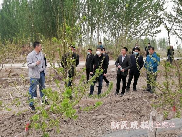 上海消费扶贫联盟赴喀什地区调研 助力援疆消费帮扶工作