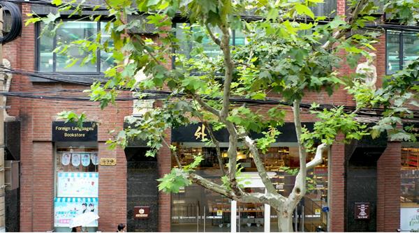 建筑可阅读   外文书店