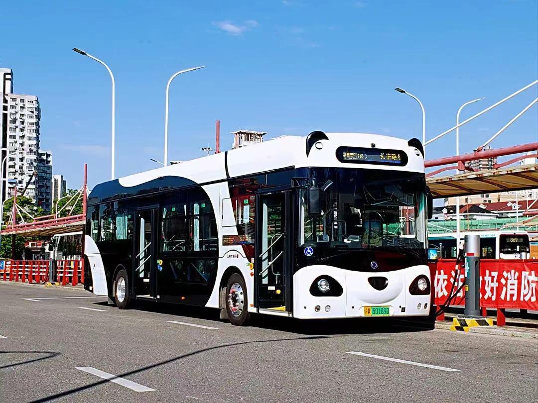 """国宝级可爱!上海""""熊猫公交车""""萌翻了!2块钱串起滨江美景!"""