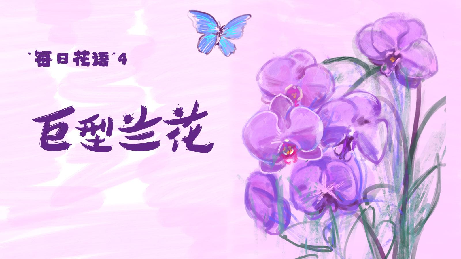 手绘花博会 | 每日花语④:巨型兰花