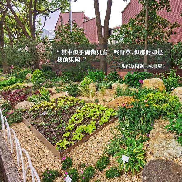上海这里新添一座花园!仿佛一秒走进鲁迅书里的世界!