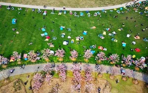 上海市区最大公园下月免费开放啦!收下这份游玩攻略→