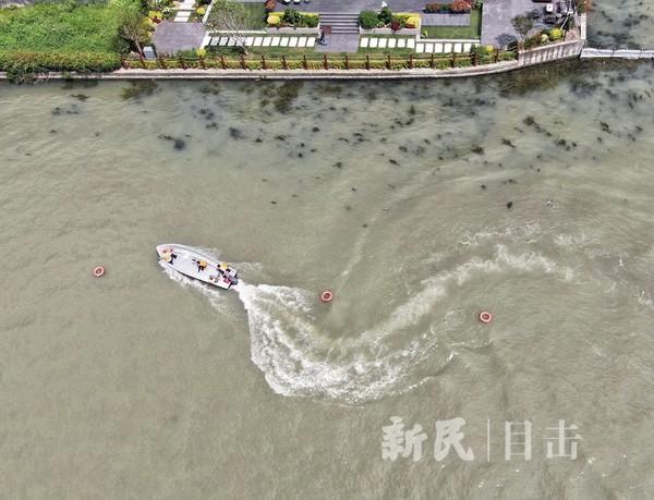 """上海公安举办""""战高温 保平安""""水域实战大练兵"""
