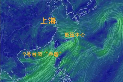 """台风""""卢碧""""来了!已影响浙江!名字含义居然是…上海周末会大风大雨吗?"""
