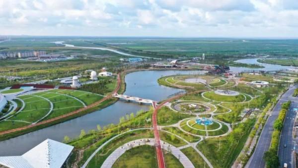 """超50万㎡!上海最大海绵公园,""""星空之境""""开园!想和你一起躺在星河里!"""