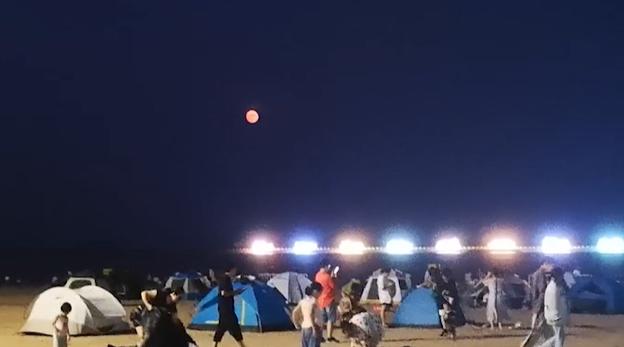 视频|海上升明月 这个又古典又现代的中秋游园会在金山举行