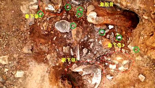 """国家文物局通报""""考古中国""""重要考古发现 力争在旧石器考古研究领域有新突破"""