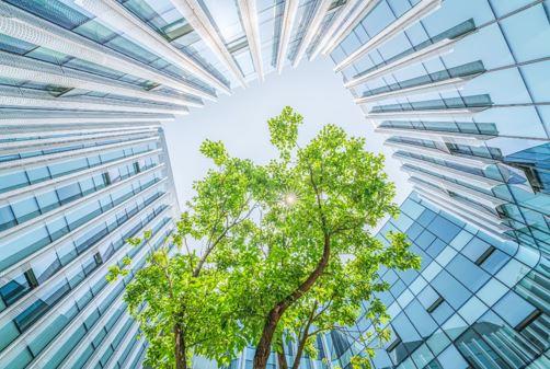 索尼微软推出联合创新实验室 助力合作伙伴打造环保智能建筑